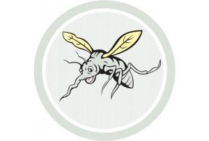 dengue-repelente