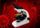 microscopio_celulasdecancer_freedigitalphotos