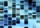 dna_freeimages