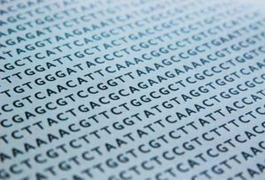 DNA2_freeimages2